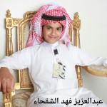 عبدالعزيز فهد الشقحاء 